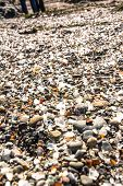 stock photo of mendocino  - A lot of glass pieces in the Glass Beach - JPG