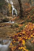 foto of waterfalls  - Autumn Waterfall in the forest - JPG