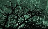 stock photo of leafy  - Photo collage digital technique style dark beautiful dreamy night leafy nature landscape with trees silhouettes in green dark background in wide screen format - JPG