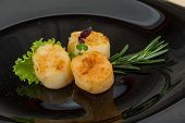 pic of scallops  - Grilled scallops in the bowl with herbs - JPG