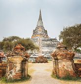 picture of thong  - Wat Phu khao Thong - JPG