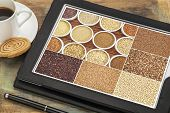image of sorghum  - Reviewing pictures of healthy gluten free grains  - JPG