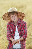 stock photo of oats  - Portrait of teenage farmer boy is checking golden yellow oat seeds in cupped palms at harvest time field - JPG