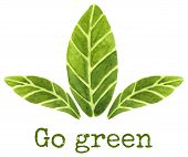 stock photo of greens  - Ecological concept - JPG