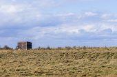 picture of wooden shack  - Wooden Bird Watching Hut Spurn Point in natrue reserve Yorkshire Unitied Kingdom - JPG