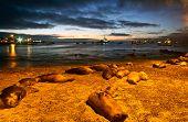 pic of sea lion  - Beautiful sea lions sleeping along the port in San Cristobal island during sunset - JPG