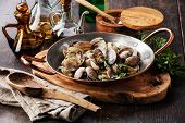 picture of clam  - Shells vongole venus clams with parsley in copper cooking dish on dark wooden background - JPG