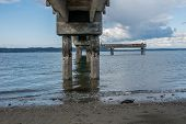 pic of tide  - Pierr pilings encrusted with barnacles are revealed at low tide - JPG