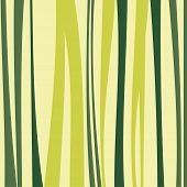 foto of bamboo  - Bamboo pattern for you design with green color - JPG
