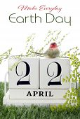foto of grass bird  - Earth Day April 22 Concept with vintage wood calendar and small birds and fern on grass background - JPG