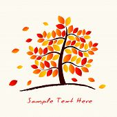 pic of maple tree  - Vector Autumn Tree on the ground with space for your text - JPG