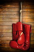 stock photo of boxing gloves  - boxing - JPG