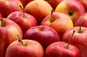 Many Red Apples, Fresh Fruit Background In Market poster