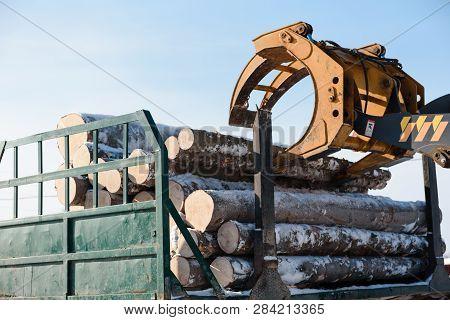 poster of Tractor Loads Logs. Logs Taken Away. The Manipulator Loads The Logs. Trees Sawed.
