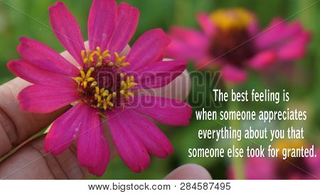 Inspirational Motivational Quotethe Best Feeling