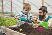 Play With Ground. Small Child Play With Ground. Play With Ground In Greenhouse. Father And Son Play  poster