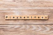 Pleasantness Word Written On Wood Block. Pleasantness Text On Wooden Table For Your Desing, Concept poster