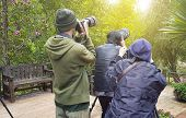 Professional Wildlife Photographer In Nature With Camera,photographer Takes A Picture With Professio poster