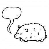 picture of wombat  - wombat with speech bubble - JPG