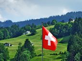National Flag Of The Swiss Confederation (flag Of Switzerland - National Flag Of Switzerland) / Nati poster