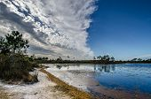 Contrasting Sky Scape Of Afternoon Clouds Rolling Over Gator Lake In Jonathan Dickinson State Park I poster