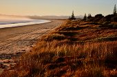 Sand Dunes Next To The Seashore, New Zealand; The Narrow But Precious Bands Of Sand That Lie Between poster