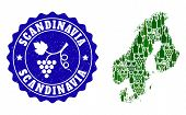 Vector Collage Of Wine Map Of Scandinavia And Grape Grunge Seal Stamp. Map Of Scandinavia Collage Cr poster