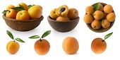 Ripe Apricots Isolate On A White. Two Bowls With Apricots With Leaves Isolated On White Background.  poster