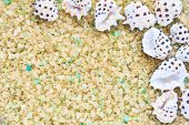 Sea Shells On Crystals Of Aromatic Bath Sea Salt For Spa May Use As Summer Background Or Frame. Summ poster