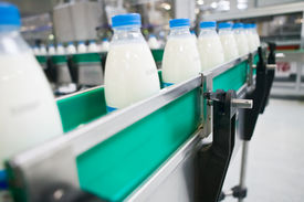 stock photo of food plant  - Dairy Plant. Conveyor with milk bottles. Line.