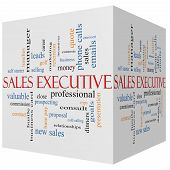 Sales Executive 3D Cube Word Cloud Concept