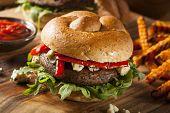 pic of veggie burger  - Healthy Vegetarian Portobello Mushroom Burger with Cheese and Veggies - JPG