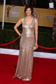 Betsy Brandt at the 19th Annual Screen Actors Guild Awards Arrivals, Shrine Auditorium, Los Angeles,