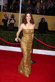 Jennifer Garner at the 19th Annual Screen Actors Guild Awards Arrivals, Shrine Auditorium, Los Angel