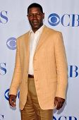 PASADENA - JULY 15: Dennis Haysbert at CBS's TCA Press Tour at The Rose Bowl on July 15, 2006 in Pas