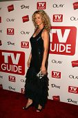 HOLLYWOOD - AUGUST 27: Jenna Elfman at the TV Guide Emmy After Party at Social August 27, 2006 in Ho