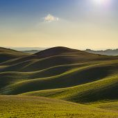 stock photo of farm landscape  - Tuscany rural landscape in Crete Senesi land - JPG