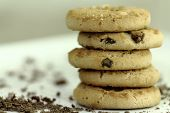 pic of chocolate-chip  - Chocolate cookies with chocolate chips with white background - JPG