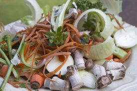 stock photo of scrape  - Close up of plate full of vegetable peels and scrapings waiting to be composted  - JPG