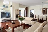 image of scant  - Modern living room - JPG