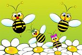 stock photo of bumble bee  - Bee Family - JPG