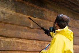 stock photo of pressure-wash  - a man wearing a respiratore while he sprays some siding - JPG