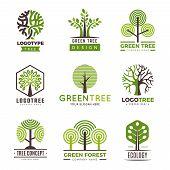 Tree Logotypes. Eco Green Symbols Wood Stylized Trees Plants Vector Logo. Illustration Of Eco Wood T poster