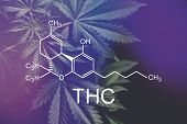 Thc Formula, Cannabinoid . Growing Marijuana, Despancery Business. Cannabinoids And Health, Medical  poster