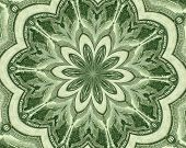 picture of twenty dollar bill  - Flower of wall street design based on the dollar - JPG