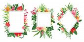 Tropical Flower Frames. Botanical Tropics Borders, Tropic Flowers Invitation Frame And Summer Plants poster