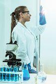 Woman Scientist Working In Chemist Laboratory. poster
