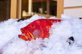 Bright Red Fresh Sea Bass On The Counter Overlaid With Ice For Sale. Exotic Grouper At The Fish Mark poster