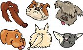 picture of newfoundland puppy  - Cartoon Illustration of Different Happy Dogs Heads Collection Set - JPG