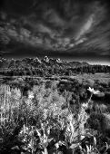 picture of blacktail  - Early summer morning view of the Tetons as seen from Blacktail Ponds Overlook - JPG